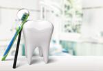 Сlipart Human Teeth Toothbrush Dental Hygiene White Isolated   BillionPhotos