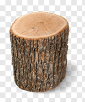 Сlipart Log Tree Stump Tree Trunk Wood Firewood photo cut out BillionPhotos