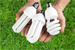 Сlipart Light Bulbs Compact Fluorescent Lightbulb Alternative Energy Lighting Equipment Energy   BillionPhotos
