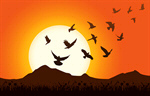 Сlipart Sunrise Bird Dove Sun Flying vector  BillionPhotos