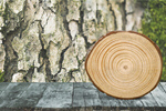 Сlipart Log Tree Stump Tree Trunk Wood Firewood   BillionPhotos