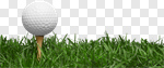 Сlipart Golf Grass Golf Ball Ball Tee photo cut out BillionPhotos
