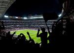 Сlipart soccer world cup stadium fan vector  BillionPhotos