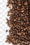 Сlipart bean background white closeup isolated photo cut out BillionPhotos