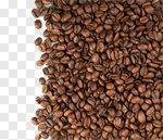 Сlipart Coffee Bean Bean Textured Brown Backgrounds photo cut out BillionPhotos