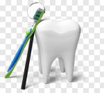 Сlipart Human Teeth Dental Hygiene Dental Equipment Toothbrush White 3d cut out BillionPhotos