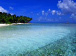 Сlipart Beach Tropical Climate Australia Palm Tree Island photo free BillionPhotos