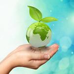 Сlipart Earth Green Globe Environmental Conservation Leaf   BillionPhotos