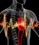 Сlipart Human Heart Pulse Trace Heartbeat Cardiologist Healthcare And Medicine 3d  BillionPhotos
