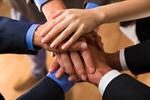 Сlipart Business Teamwork Human Hand Partnership Occupation photo  BillionPhotos