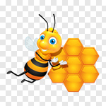 Сlipart Bee Honey Honey Bee Insect Single Flower vector cut out BillionPhotos
