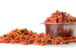 Сlipart Dog Food Pet Food Pets Animal Healthy Eating photo  BillionPhotos