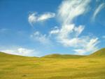 Сlipart Field Grass Flower Sky Green photo  BillionPhotos