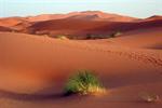 Сlipart Outback Australian Culture Australia Desert Landscape photo  BillionPhotos