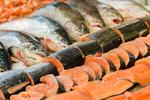 Сlipart Fish Fish Market Seafood Fillet Raw photo  BillionPhotos