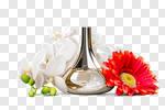 Сlipart Perfume Scented Bottle Single Flower Flower photo cut out BillionPhotos
