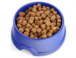Сlipart Dog Bowl Dog Food Pet Food kibble Brown photo  BillionPhotos