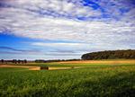 Сlipart Tuscany Hill Landscape Italy Farm photo  BillionPhotos