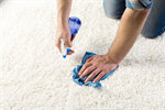 Сlipart carpet stain clean cleaner hands photo  BillionPhotos