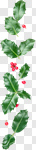 Сlipart Christmas Holly Christmas Decoration Frame Backgrounds photo cut out BillionPhotos