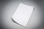 Сlipart Paper Letter Document Blank White photo  BillionPhotos