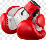 Сlipart Boxing Glove Punching Winning Red Punch photo cut out BillionPhotos