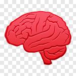 Сlipart Brain Vector Illustration and Painting Human Internal Organ Cerebellum vector cut out BillionPhotos