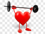 Сlipart Heart Shape Healthy Lifestyle Healthcare And Medicine Exercising Strength 3d cut out BillionPhotos