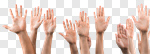 Сlipart Human Hand Education Asking Multi-Ethnic Group Hand Raised photo cut out BillionPhotos