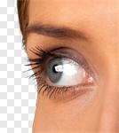 Сlipart Human Eye Women Human Face Close-up Beauty photo cut out BillionPhotos