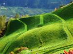 Сlipart Green Hill Mountain Valley Sky photo  BillionPhotos