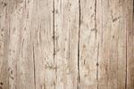 Сlipart wood texture grain pale t4l photo free BillionPhotos