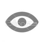 Сlipart Human Eye Eye Vision Sight Pupil vector icon cut out BillionPhotos