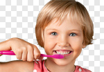 Сlipart Dental Hygiene Human Teeth Child Brushing Smiling photo cut out BillionPhotos