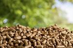 Сlipart biomass boilers biofuel pellet wood   BillionPhotos