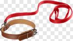 Сlipart Dog Leash Pet Collar Walking Pets photo cut out BillionPhotos