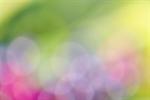 Сlipart pink blue sunlight green texture photo free BillionPhotos