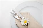 Сlipart buffet catering cuisine dine dinner photo  BillionPhotos