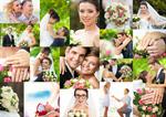 Сlipart bride forest groom sunlight hands photo  BillionPhotos