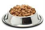 Сlipart Dog Food Pet Food Food Animal Food Bowl Metal photo  BillionPhotos