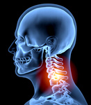 Сlipart Human Spine Human Neck Pain X-ray X-ray Image 3d  BillionPhotos