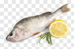 Сlipart Fish Food Lemon Rainbow Trout Freshness photo cut out BillionPhotos