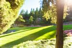 Сlipart green view field outdoor breathtaking photo  BillionPhotos