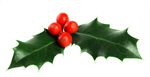 Сlipart Holly Christmas Christmas Ornament Christmas Decoration Decoration photo  BillionPhotos