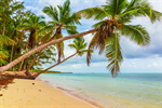 Сlipart beach scene sunlight wallpaper coast photo  BillionPhotos