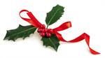 Сlipart Holly Christmas Ribbon Bow Garland photo  BillionPhotos