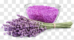 Сlipart Lavender Spa Treatment Health Spa Alternative Medicine Lavender Coloured photo cut out BillionPhotos