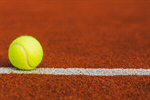 Сlipart Tennis Court Grass Lawn Single Line photo  BillionPhotos
