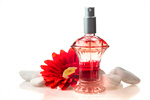 Сlipart Perfume Scented Bottle Single Flower Flower photo  BillionPhotos