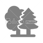 Сlipart Tree Environment Nature Plant Isolated vector icon cut out BillionPhotos